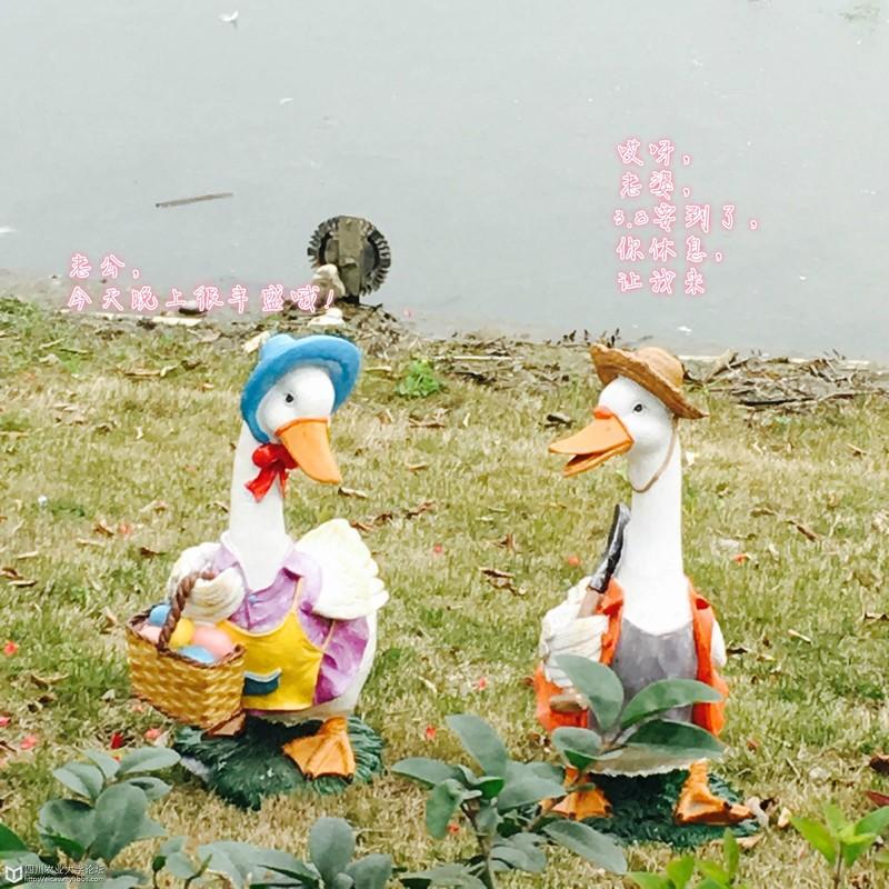 昨天去国色天乡耍了一趟,发现这两只鸭子和乌龟好乖哦,于是就把他们玩坏了